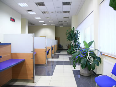 Interior Office Plant Services